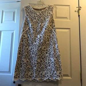 Loft lace shift dress